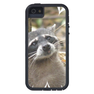 Masked Raccoon iPhone 5 Case