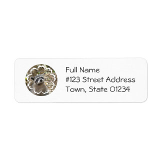 Masked Raccoon Mailing Label