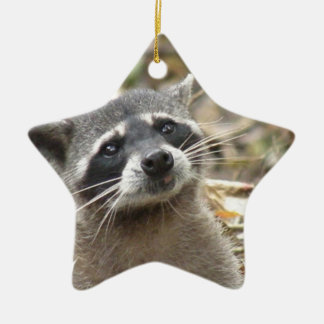 Masked Raccoon Ornament
