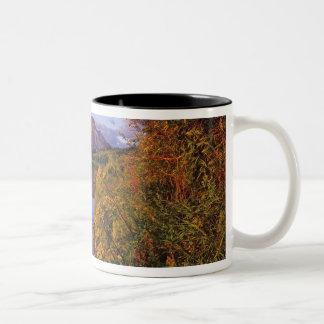 Maskinonge Lake in Waterton Lakes National Park 2 Two-Tone Coffee Mug