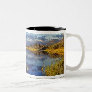 Maskinonge Lake in Waterton Lakes National Park 3 Two-Tone Coffee Mug