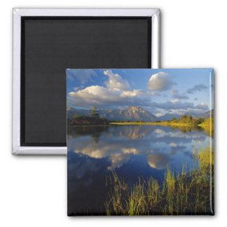 Maskinonge Lake in Waterton Lakes National Park Magnets