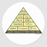 Maslow's Hierarcy of Student Nurse Needs Stickers