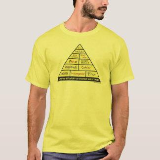 Maslow's Hierarcy of Student Nurse Needs T-Shirt