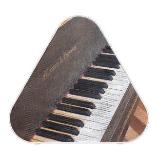 Mason & Hamlin Piano Speaker