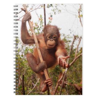 Mason Orangutan - Lend Me a Hand Spiral Notebook