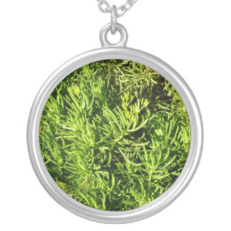 mass succulent green foliage image round pendant necklace