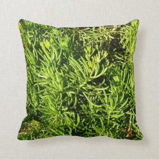 mass succulent green foliage image throw pillow
