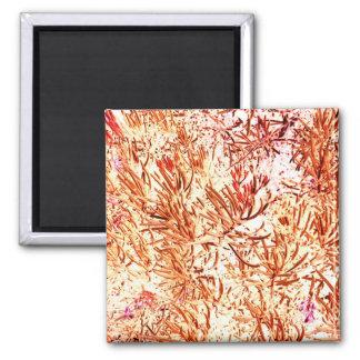 mass succulent invert orange abstract pattern magnets