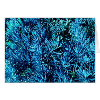 mass succulent stems abstract blue pattern greeting cards