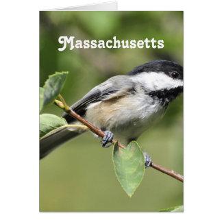 Massachusetts Chickadee Stationery Note Card