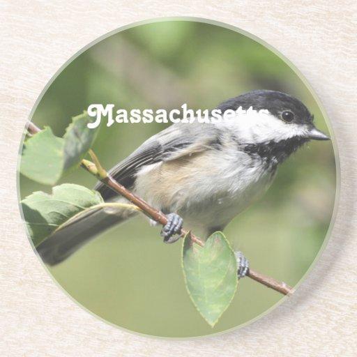 Massachusetts Chickadee Coaster