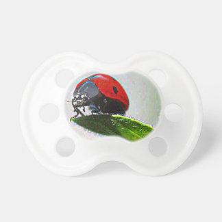 Massachusetts Ladybug Pacifiers