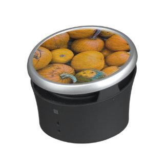 Massachusetts, Salisbury, pumpkins, autumn Bluetooth Speaker