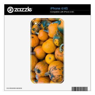 Massachusetts, Salisbury, pumpkins, autumn Decals For The iPhone 4S