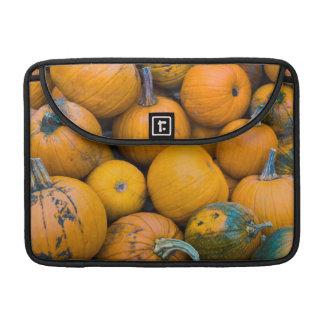 Massachusetts, Salisbury, pumpkins, autumn MacBook Pro Sleeve