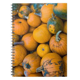 Massachusetts, Salisbury, pumpkins, autumn Spiral Notebook