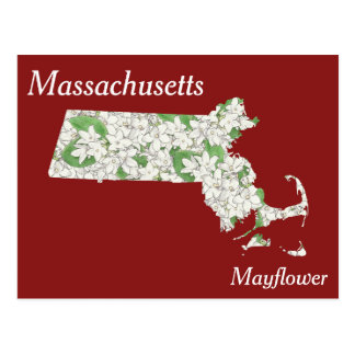 Massachusetts State Flower Collage Map Postcard