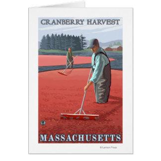 MassachusettsCranberry Bog Harvest Card