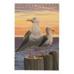 MassachusettsSea Gulls escena Cuadro De Madera