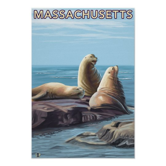 MassachusettsSea Lions Scene Poster