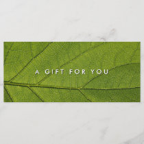 Massage Spa Wellness Nature Gift Certificates