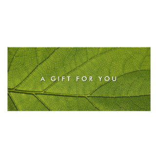 Massage Spa Wellness Nature Gift Certificates