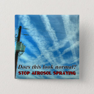 Massive Chemtrail Grid Pinback Button