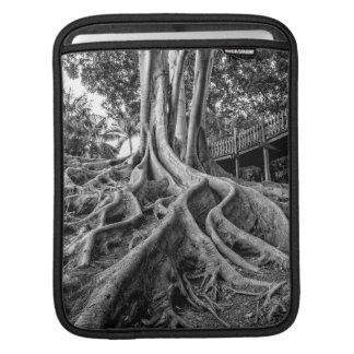 Massive rubber tree roots iPad sleeve