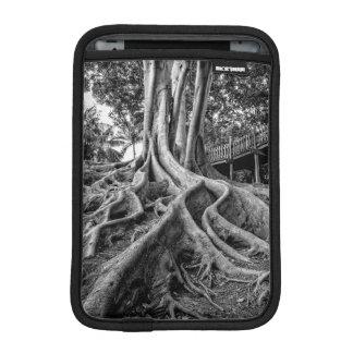 Massive rubber tree roots iPad mini sleeves