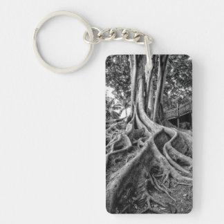 Massive rubber tree roots keychain
