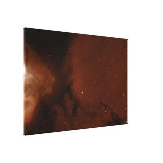 Massive Stars Sculpt Gas of Nebula N83B Canvas Print