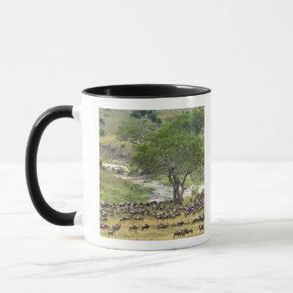 Massive Wildebeest herd during migration, Mug
