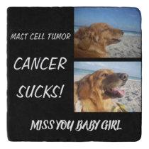 Mast Cell Tumor Skin Cancer Sucks! Trivet