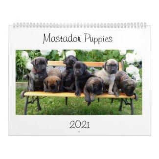 Mastador Puppies Calendar