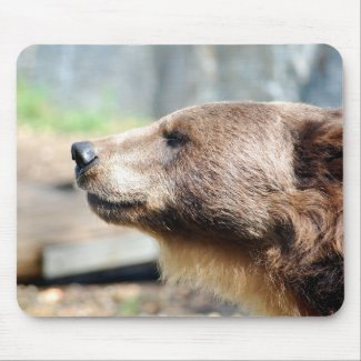 Master Bruin Mouse Pad