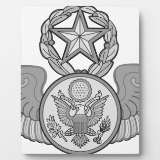 MASTER ENLISTED AIRCREW WINGS PLAQUE