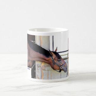 Master Plan - Todd Pletcher Coffee Mug