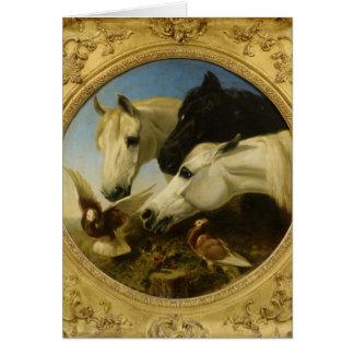 Masterpiece horse & dove painting John Herring Card
