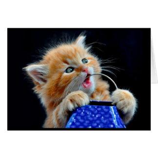 Masticación linda del gatito felicitacion