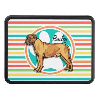 Mastiff; Bright Rainbow Stripes Trailer Hitch Cover
