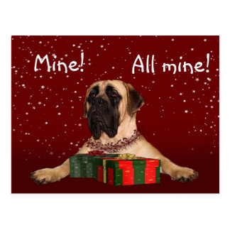 Mastiff Christmas Postcard