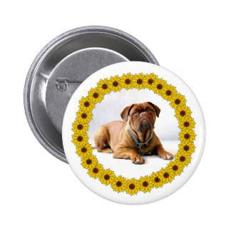 Mastiff / Dog in Yellow Sunflower Frame Pinback Button