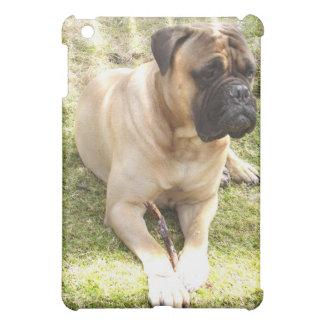 Mastiff Dog iPad Case