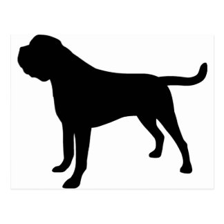 Mastiff Dog Postcard
