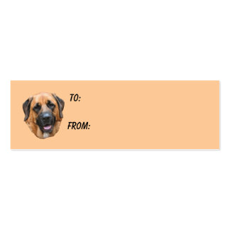 Mastiff Face Dog Photo Gift Tag Double-Sided Mini Business Cards (Pack Of 20)