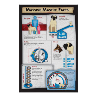 Mastiff Facts Poster