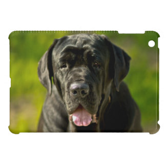 Mastiff iPad Mini Case