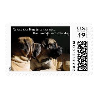Mastiff Pair Postage