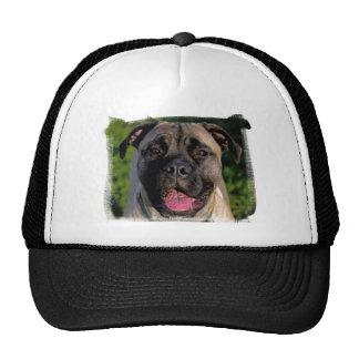 Mastiff Smile Hat